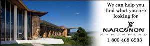 Narconon Center banner